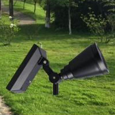 Đèn sân vườn năng lượng mặt trời DLNL-10 giá rẻ
