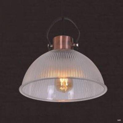Đèn thả hiện đại 1 bóng led hàng cao cấp chính hãng Dt19